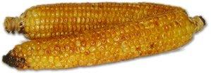 corn_small1